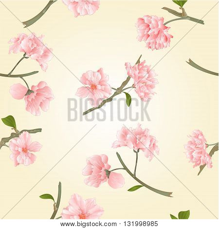 Seamless texture blossoms sakura natural background vector illustration