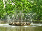Fountain In Petrodvorets