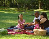 Постер, плакат: Пикник в парке
