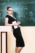 Постер, плакат: Образовательные Тема: портрет привлекательной учителя