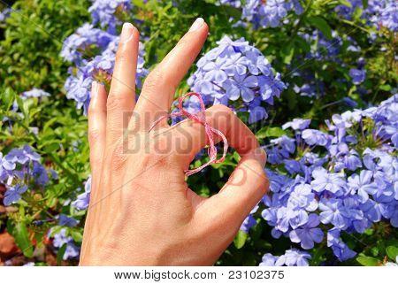 Kreative Rosa Ordnung Handzeichen