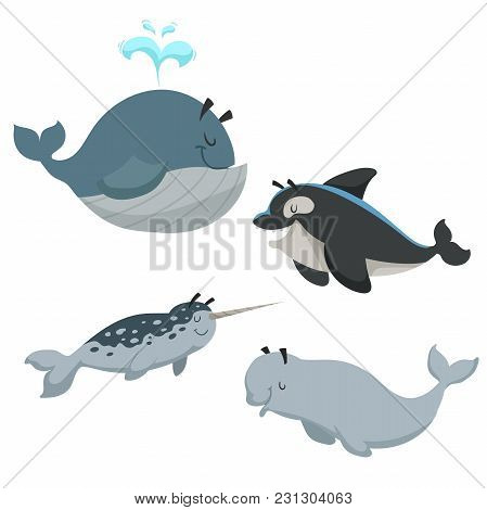 Cartoon Sean Animals Set Whale