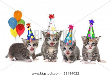 Singing Kittens on a White Background With Birthday Hats and Balloons