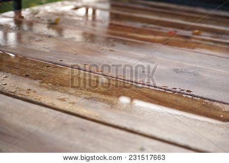 Wet Wood Floor In Daylight
