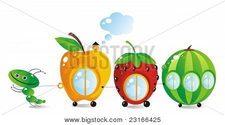 Fruit-berry Small Houses