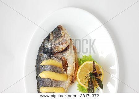 Fish Meat