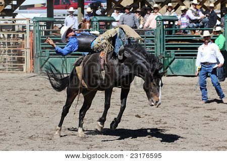 52Nd Annual Pro Rodeo
