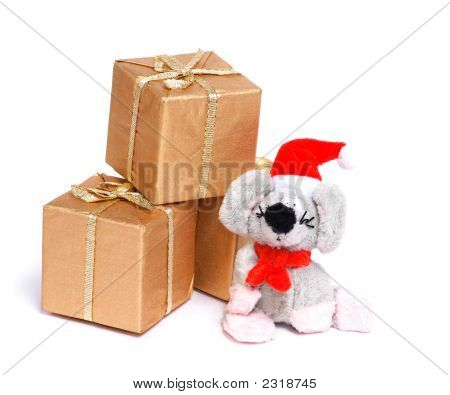 Mouse And Gift Box