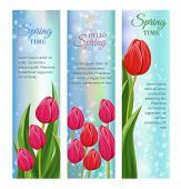 Hello Spring Greeting Cards With Blooming Tulip Flower Festive  Illustration. Floral Decorated Sprin poster