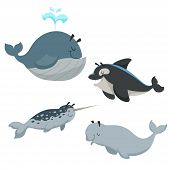 Cartoon Sean Animals Set. Whale With Fountain, Killer Whale Orca, White Beluga Whale And Narwhal. Se poster