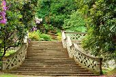 image of hever  - closeup of stone stairs in Hever Castle gardens England - JPG