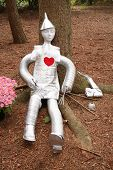 stock photo of tin man  - lifesize replica of the tinman from wizard of oz - JPG