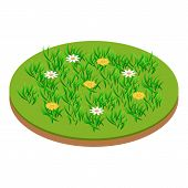 Meadow Icon. Isometric Illustration Of Meadow Vector Icon For Web poster