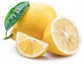 Lemon fruits and lemon slices on white background. poster