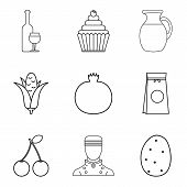 Vegan Ration Icons Set. Outline Set Of 9 Vegan Ration Vector Icons For Web Isolated On White Backgro poster
