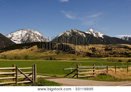 Springtime In Montana
