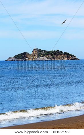 Island Near Iztuzu Beach And A Seagull, Turkey