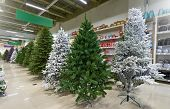 Sale Of Many Artificial Christmas Trees In Green, Purple And White At A Decor Store. The Sale Of A V poster