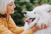 Happy Elderly Woman Hugging Her Pedigree Pet Outside poster
