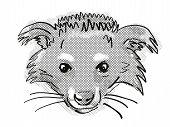 Retro Cartoon Style Drawing Of Head Of A Binturong Or Arctictis Binturong, An Endangered Wildlife Sp poster