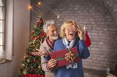 Senior Couple Exchanging Christmas Presents poster