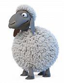 3d Illustration Herbivorous And Fluffy Farm Animal Herbivorous And Fluffy Animal Grazing In The Mead poster