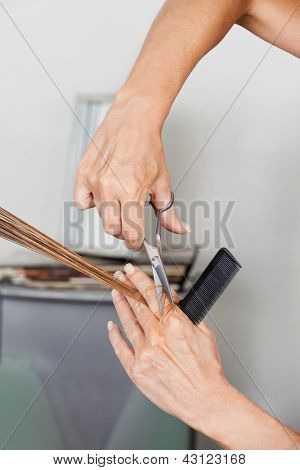 Female hairstylist's hands cutting hair at salon