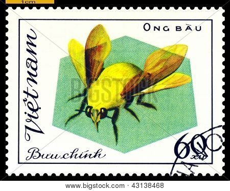 Vintage  Postage Stamp. Insect Ong Bau.