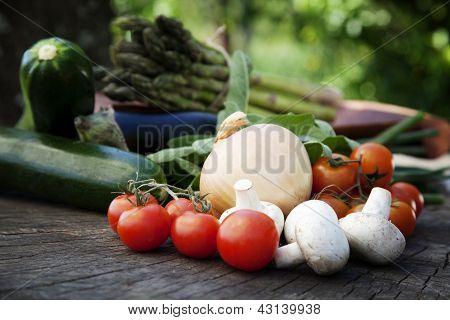 Produto fresco jardim