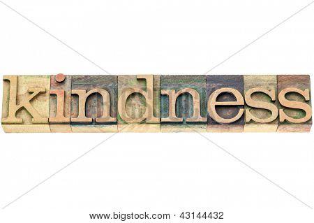 kindness  - isolated word in vintage letterpress wood type printing blocks