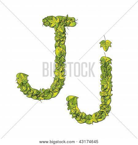 Leaf Font J