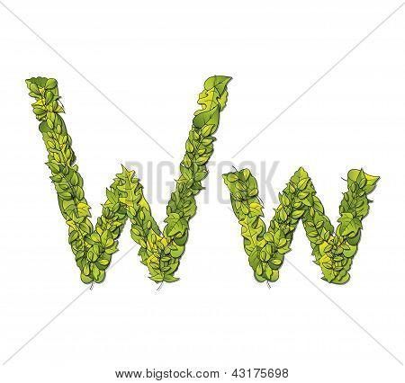 Leaf Font W