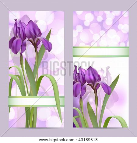 Set of spring banners with Purple Iris Flowers