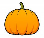 picture of gourds  - A cute cartoon pumpkin isolated on white - JPG