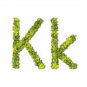 picture of storybook  - Leafy storybook font depicting a letter K in upper and lower case - JPG