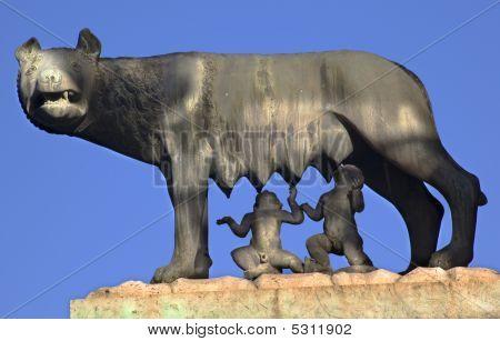 Kapitolinische wolf Romulus Remus Statue Forum Rom Italien