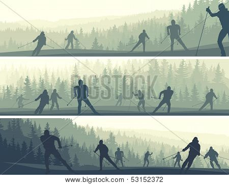 Horizontal Banners Of Skiers In Hills Coniferous Forest.