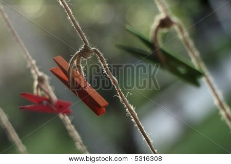Wooden Pin