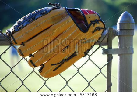 Baseball Glove On Fence