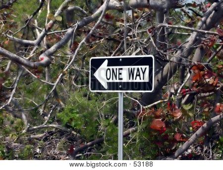 O One-Way
