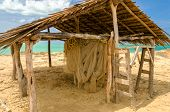 picture of wooden shack  - Old weathered wooden hut next to the Caribbean Sea