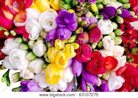 Freesia Colorful Bouquet
