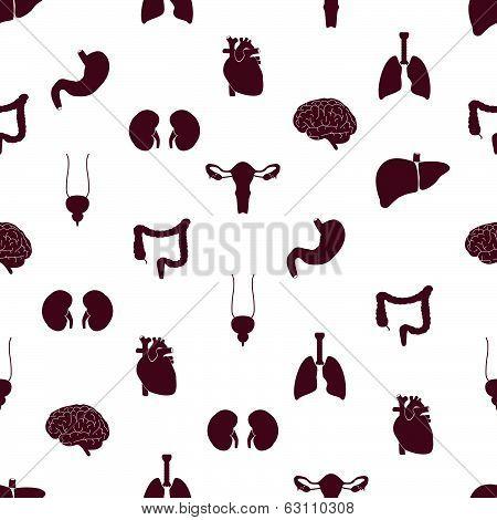 internal human body organs pattern eps10