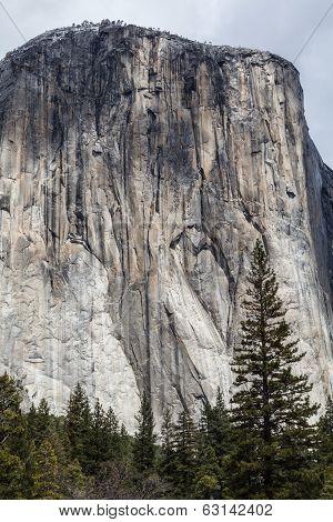 El Capitan - Yosemite Valley I