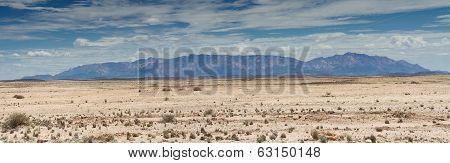 Panorama Of The Namib Stone Desert