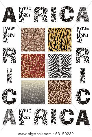 Africa - background with text and texture wild animal