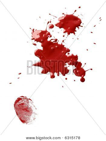 Blood Stains And Fingerprint
