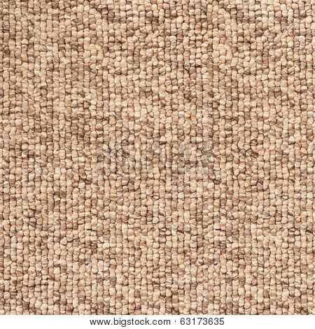 Beige - Brown Carpet Texture.