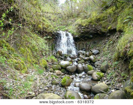 Oregon Hideaway