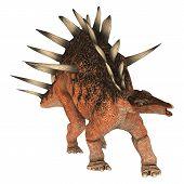 stock photo of giant lizard  - 3D digital render of a dinosaur Kentrosaurus isolated on white background - JPG